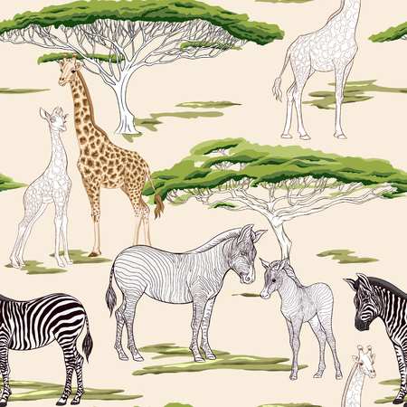 Seamless pattern, background  with adult zebra and giraffe  and zebra and giraffe cubs. Vector illustration. Foto de archivo - 107698898