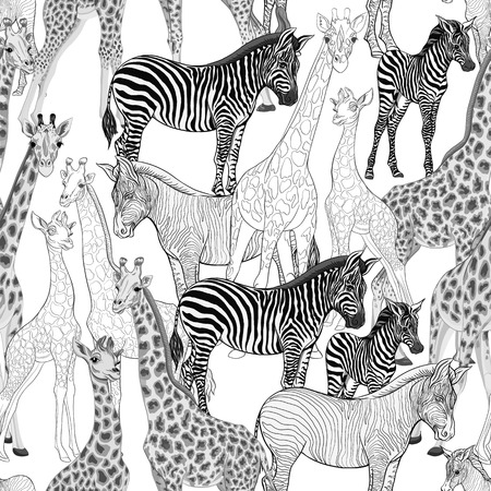 Seamless pattern, background  with adult zebra and giraffe  and zebra and giraffe cubs. Vector illustration. Archivio Fotografico - 107698977