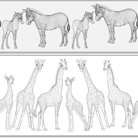 Nahtloses Muster, Hintergrund mit erwachsenen Zebras und Giraffen und Zebra- und Giraffenjungen. Vektor-Illustration. Vektorgrafik