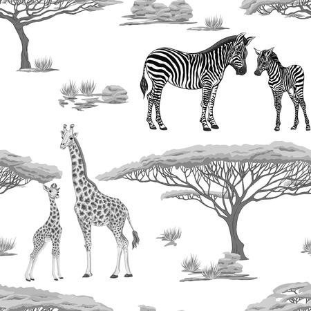 Seamless pattern, background  with adult zebra and giraffe  and zebra and giraffe cubs. Vector illustration.