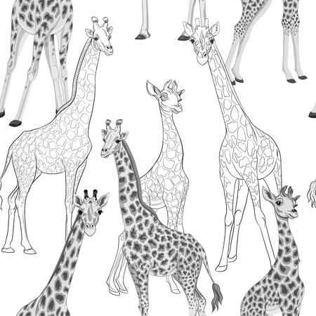 Seamless pattern with giraffe.  Vector illustration.
