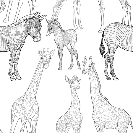 Seamless pattern, background  with adult zebra and giraffe  and zebra and giraffe cubs. Vector illustration. Foto de archivo - 107699023