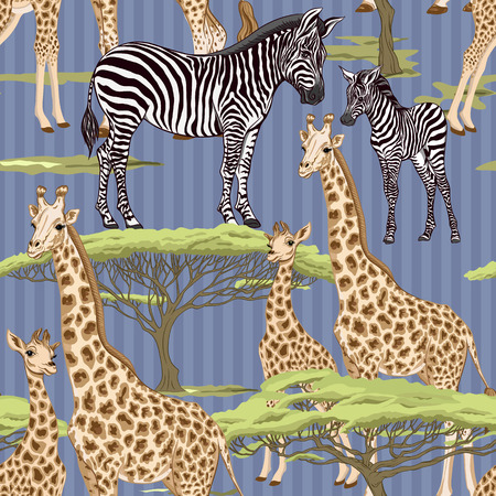 Seamless pattern, background  with adult zebra and giraffe  and zebra and giraffe cubs. Vector illustration. Archivio Fotografico - 107699128