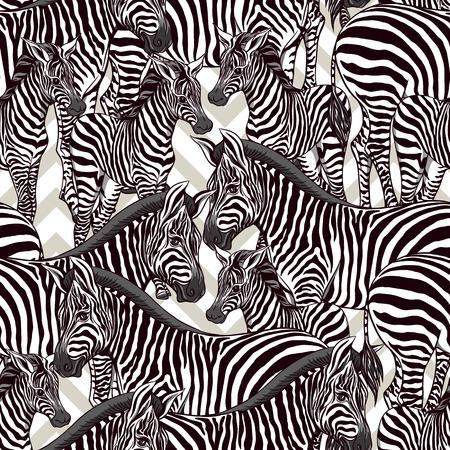 Seamless pattern, background  with adult zebra  and zebra cub. Vector illustration. Ilustração