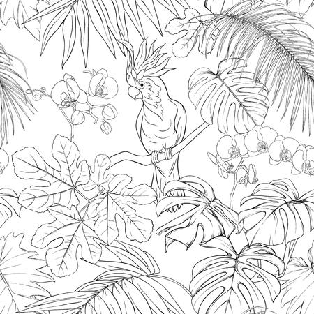 Patrón sin costuras, fondo. con plantas tropicales y flores con orquídeas blancas y aves tropicales. Ilustración de vector de dibujo a mano de contorno.
