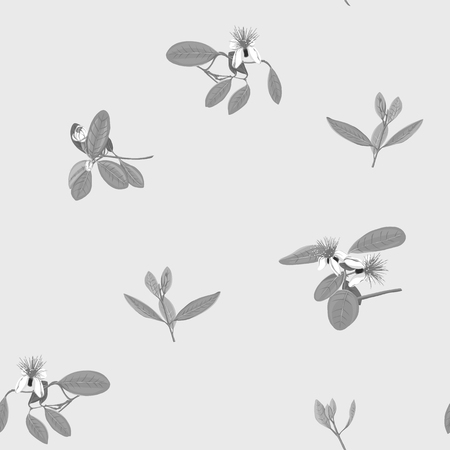 Seamless pattern, background with floral pattern with feijoa blooming flowers. Vector illustration without gradients and transparency.  In monochrome gray colors Ilustração