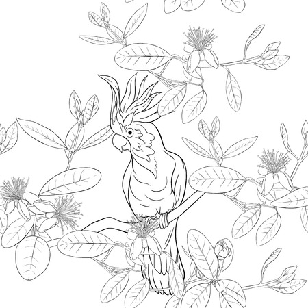 Seamless pattern, background with floral pattern with feijoa blooming flowers and  cockatoo parrot. Vector illustration without gradients and transparency.  Outline drawing.