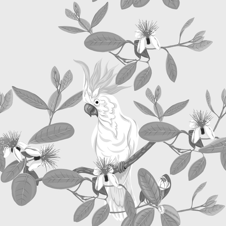 Seamless pattern, background with floral pattern with feijoa blooming flowers and  and cockatoo parrot. Vector illustration without gradients and transparency.  In monochrome gray colors