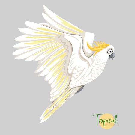Tropical bird. Vector illustration. Ilustración de vector