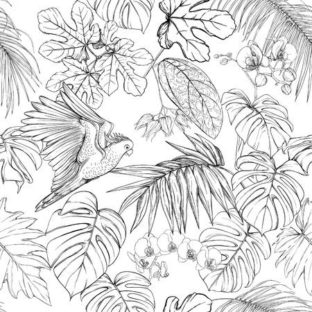 Patrón sin costuras, fondo. con plantas tropicales y flores con orquídeas blancas y aves tropicales. Dibujo gráfico, estilo de grabado. ilustración vectorial. En blanco y negro. Ilustración de vector