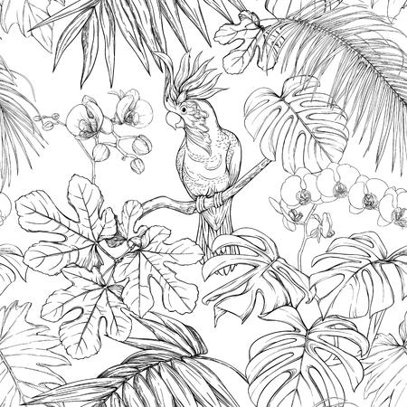 Patrón sin costuras, fondo. con plantas tropicales y flores con orquídeas blancas y aves tropicales. Dibujo gráfico, estilo de grabado. ilustración vectorial. En blanco y negro.