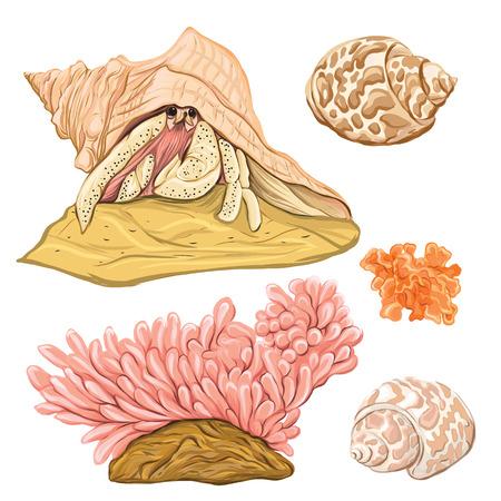 colección de mar original mano colorida ilustración vectorial me gustan los recortes y tamaños aislados sobre fondo blanco .
