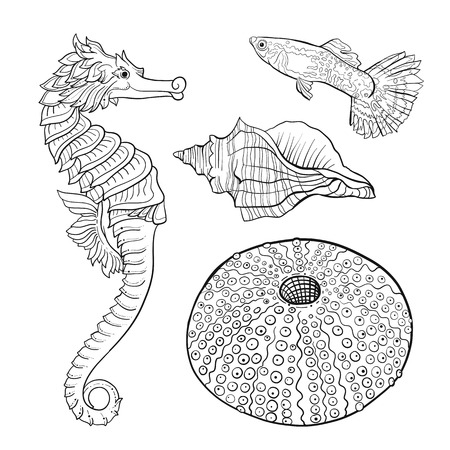 Sea collection. Original hand drawn. Vector illustration. Outline hand drawing. Isolated on white background. Stock Illustratie
