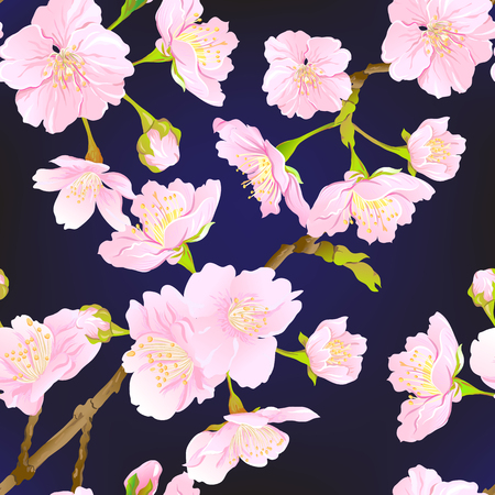 Seamless pattern, background with blooming cherry japanese sakura in soft rose pink colors. Stock vector illustration. olorful on black background.