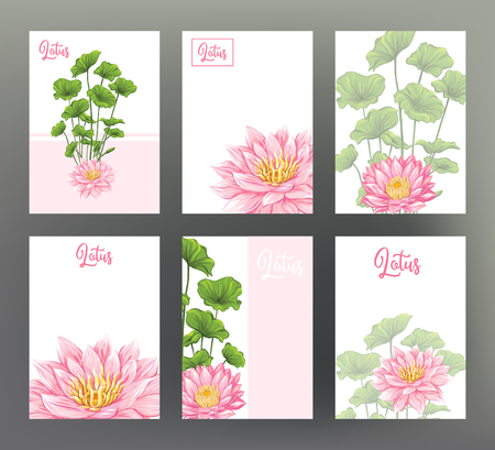 Set of 6 template of postcard, banner, invitation, gift voucher with pink flamingo and tropical flowers. Stock vector illustration.