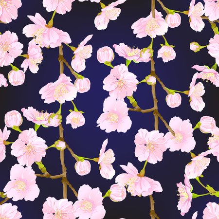 Seamless pattern, background with blooming cherry japanese sakura in soft rose pink colors. Stock vector illustration. olorful on black background. Standard-Bild - 110166746