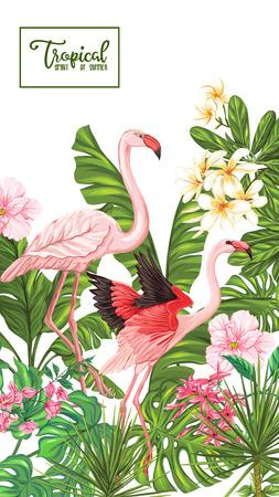 海报,横幅,与热带花和植物和火鸟鸟的明信片模板在白色背景。股票矢量图。