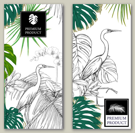 Set of two templates for label for premium product  or cards,  invitation, banner  with tropical plants, palm leaves, monsters, orchids and birds. Colored and outline design. Vector illustration.