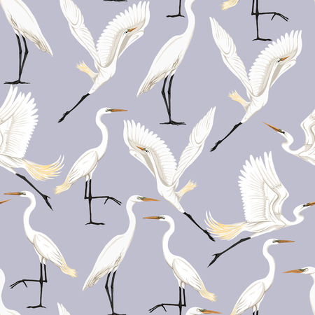 Seamless pattern, background with tropical birds. White heron, cockatoo parrot. Colored vector illustration