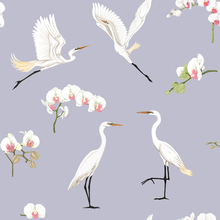 Seamless pattern, background with tropical birds. White heron, cockatoo parrot. Colored vector illustration  Vectores