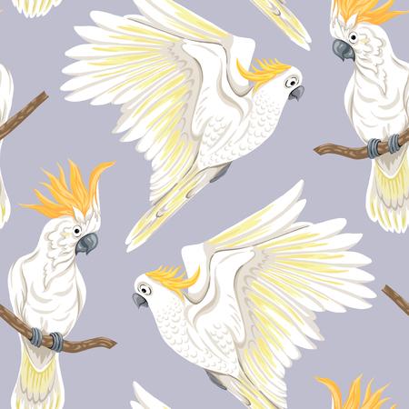 Seamless pattern, background with tropical birds. White heron, cockatoo parrot. Colored vector illustration Ilustración de vector