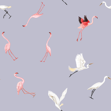 Seamless pattern, background with tropical birds. White heron,cockatoo parrot, flamingo. Colored vector illustration