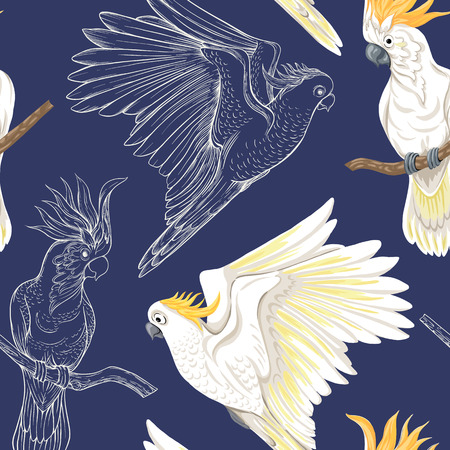 Seamless pattern, background with tropical birds. White heron, cockatoo parrot,  Colored and outline design on navy blue background..Vector illustration.