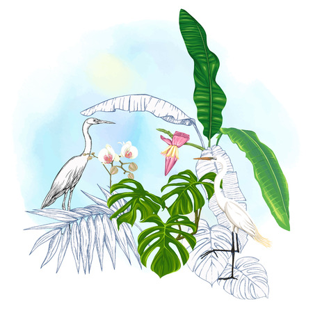 A composition of tropical plants, palm leaves, monsters and white orchids with white heron In botanical style. Colored and outline design on watercolor background. Vector illustration.