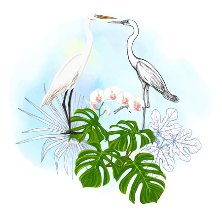 A composition of tropical plants, palm leaves, monsters and white orchids with white heron In botanical style. Colored and outline design on watercolor background. Vector illustration. Zdjęcie Seryjne - 115848250