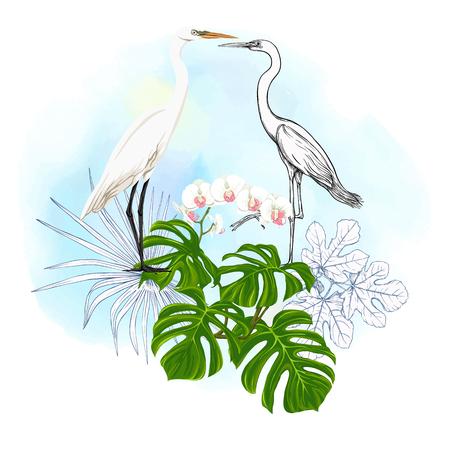 Kompozycja tropikalnych roślin, liści palmowych, potworów i białych orchidei z białą czaplą w stylu botanicznym. Kolorowy i konturowy projekt na tle akwarela. Ilustracja wektorowa.