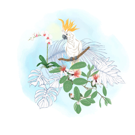 A composition of tropical plants, palm leaves, monsters and white orchids with cockatoo parrot In botanical style. Colored and outline design on watercolor background. Vector illustration.