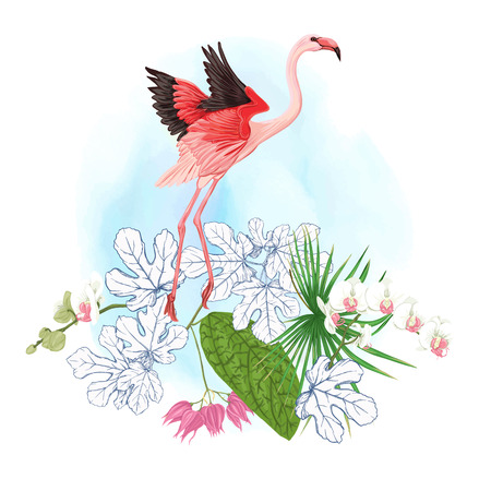 A composition of tropical plants, palm leaves, monsters and white orchids with flamingo In botanical style. Colored and outline design on background. Vector illustration.