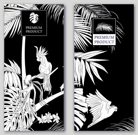 Set of two templates for label for premium product  or cards,  invitation, banner  with tropical plants, palm leaves, monsters, orchids and birds. Black-and-white graphics. Vector illustration.