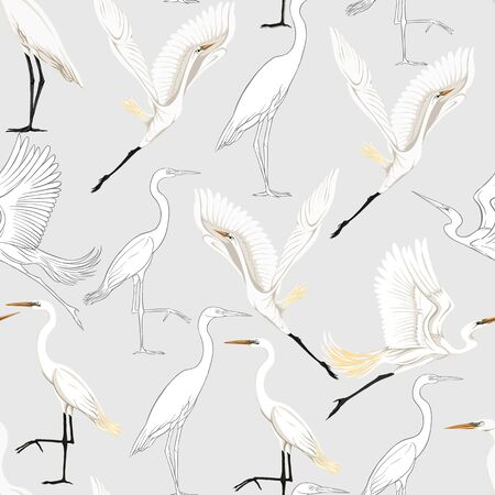 Seamless pattern, background with tropical birds. White heron, cockatoo parrot. Colored and outline design on soft grey background.. Vector illustration.
