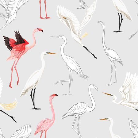Seamless pattern, background with tropical birds. White heron, flamingo. Colored and outline design on soft grey background.. Vector illustration.