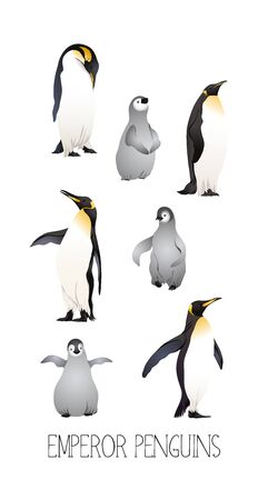 Emperor penguins  with slogan. Vector illustration. Banque d'images - 130792096