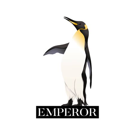 Emperor penguins  with slogan. Vector illustration. Banque d'images - 130792095