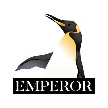 Emperor penguins with slogan. Vector illustration. Vektorové ilustrace