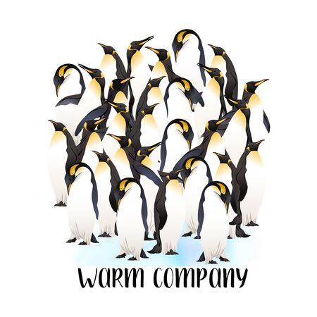 Emperor penguins  with slogan. Vector illustration.