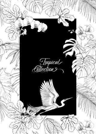 Template for greeting card for birthday,  invitation or banner  with tropical plants, palm leaves, monsters and orchids and bird In botanical style. Outline hand drawing vector illustration. Illustration