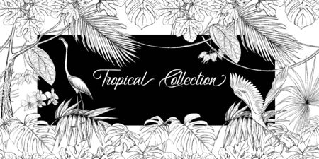 Template for greeting card for birthday,  invitation or banner  with tropical plants, palm leaves, monsters and orchids and bird In botanical style. Outline hand drawing vector illustration.