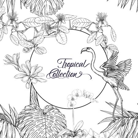 Template for greeting card for birthday,  invitation or banner  with tropical plants, palm leaves, monsters and  orchids and flamingo In botanical style. Outline hand drawing vector illustration.