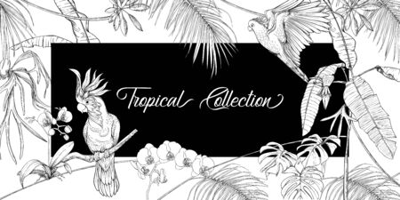 Template for greeting card for birthday,  invitation or banner  with tropical plants, palm leaves, monsters and orchids and cockatoo parrot. Outline hand drawing vector illustration.