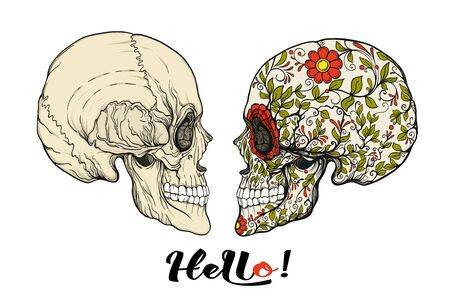 Human Skulls with hello  slogan.  Good for print on T-shirts, bags, covers.  Vector illustration.