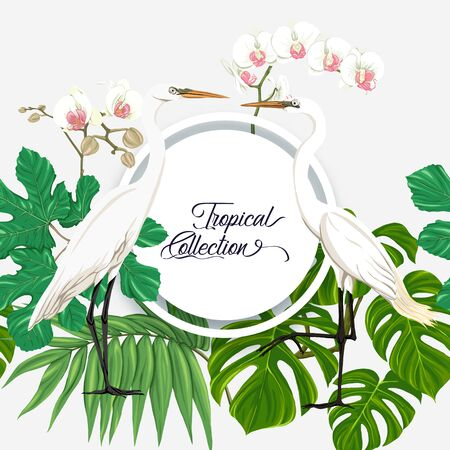 Template for greeting card for birthday,  invitation or banner  with tropical plants, palm leaves, monsters and white orchids with white heron. Colored vector illustration.
