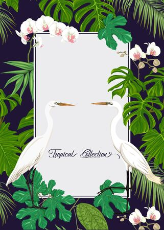 Template for greeting card for birthday,  invitation or banner  with tropical plants, palm leaves, monsters and white orchids with white heron. Colored vector illustration. Banque d'images - 130793323