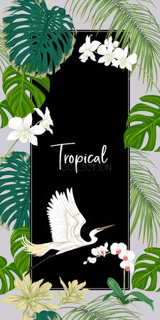 Template for greeting card for birthday,  invitation or banner  with tropical plants, palm leaves, monsters and white orchids with white heron. Colored vector illustration. Illustration