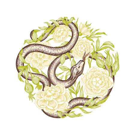 Roses and snake. Element for design. Graphic drawing, engraving style. Vector illustration..