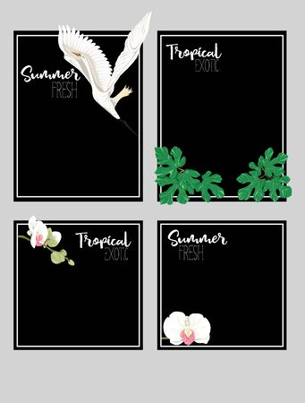 Set of text boxes for bullet journal or notes with tropical plans, flowers and birds. Stickers, elements for design on black background. Vector illustration.. Stock Vector - 132767723