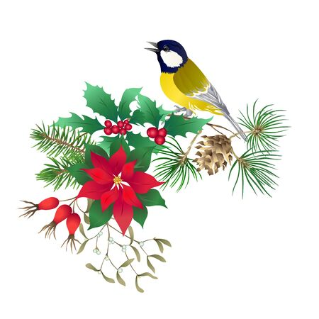 Tit bird - a symbol of winter. Christmas wreath of winter plants. Element for design. Colored vector illustration. Isolated on white background..